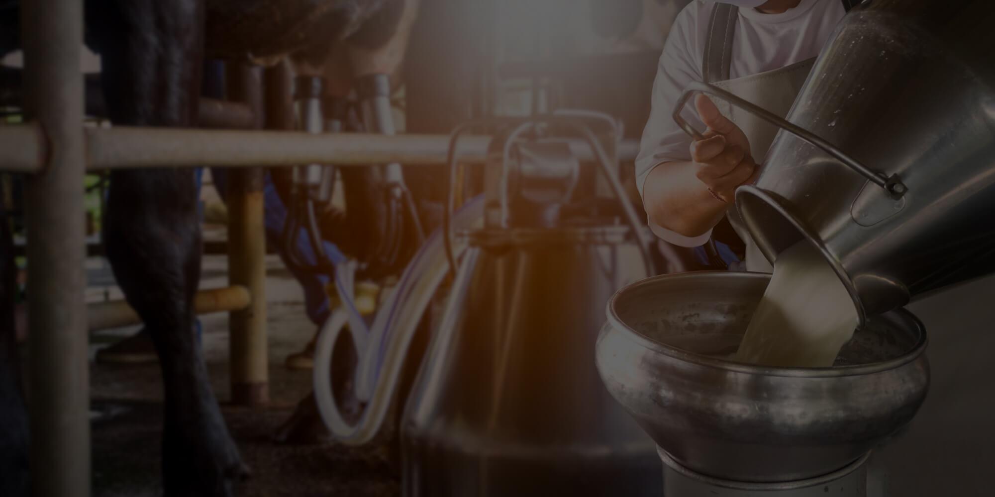 Webinar Food & beverage 4.0 powered by Alleantia&Sogetel